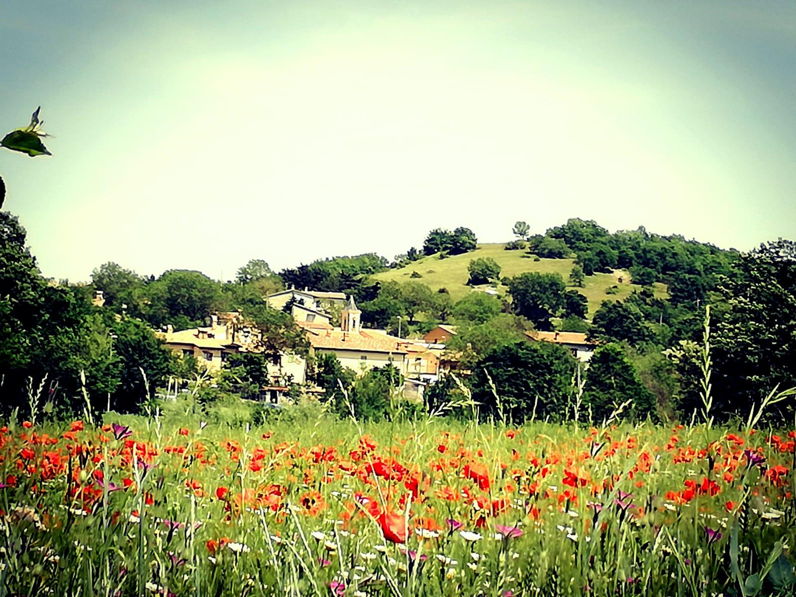 Casale di Scopoli Panorama 1